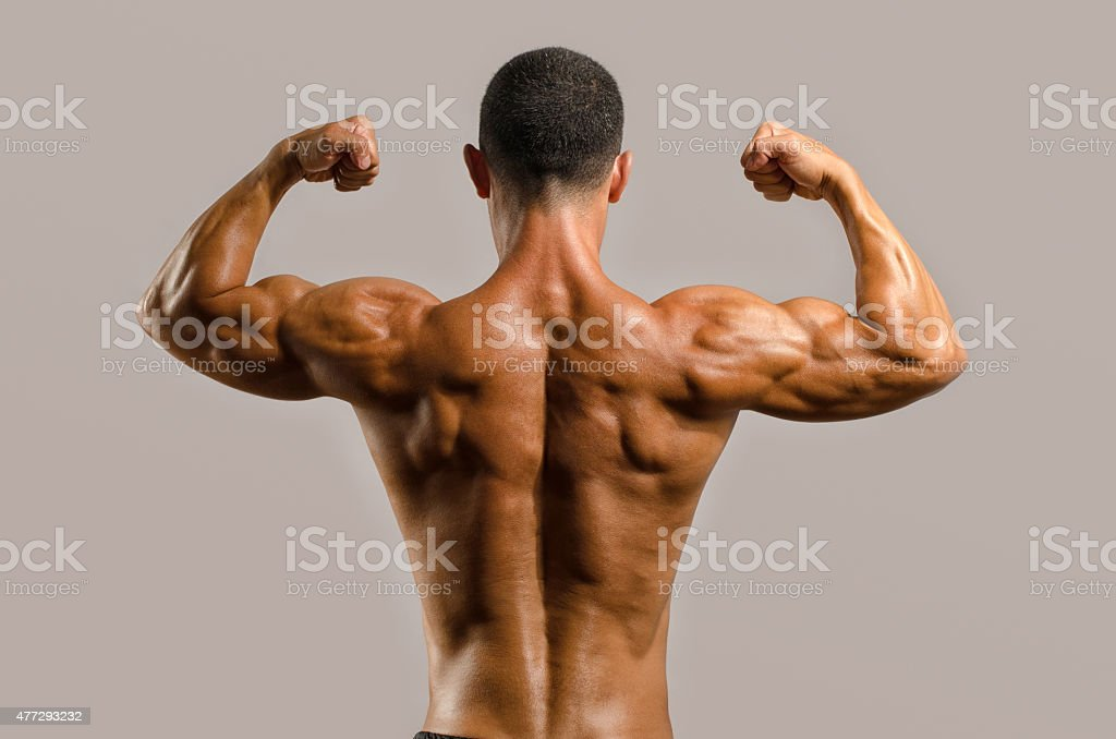 Bodybuilder showing his back,shoulders, triceps and biceps muscles stock photo
