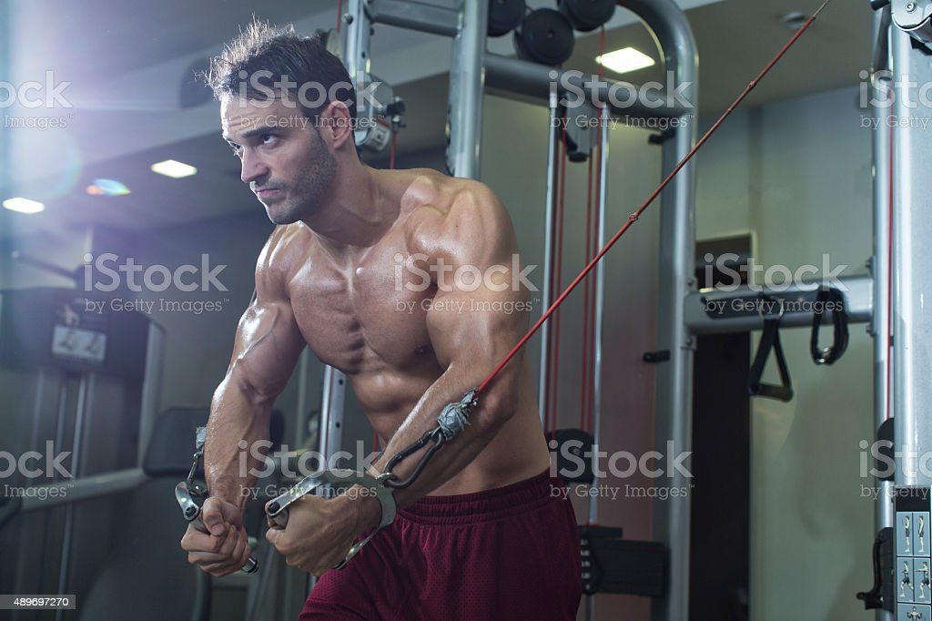 Bodybuilder working out stock photo