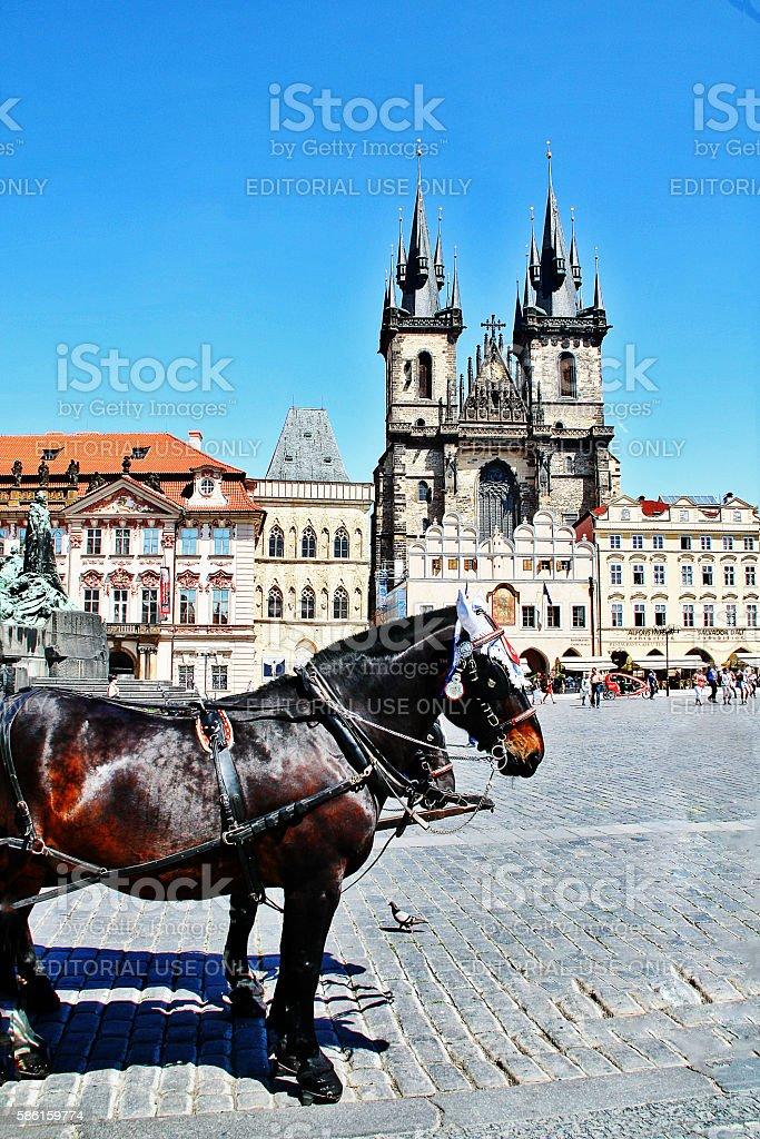 Bohemia, Prague (Praha), Czech - May 24, 2011 - Horse carriage stock photo