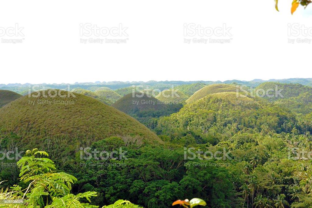 Bohol Chocolate Hills Philippines stock photo