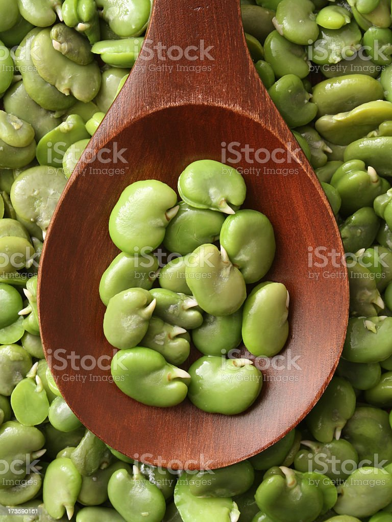 Boiled broad beans royalty-free stock photo