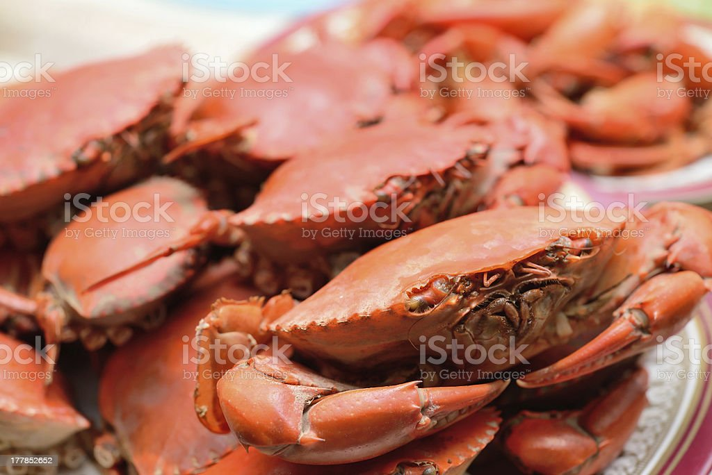 Boiled crab royalty-free stock photo
