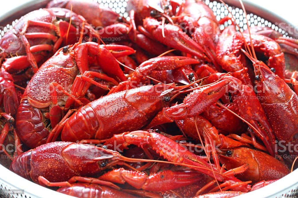 boiled crawfish, clayfish party stock photo
