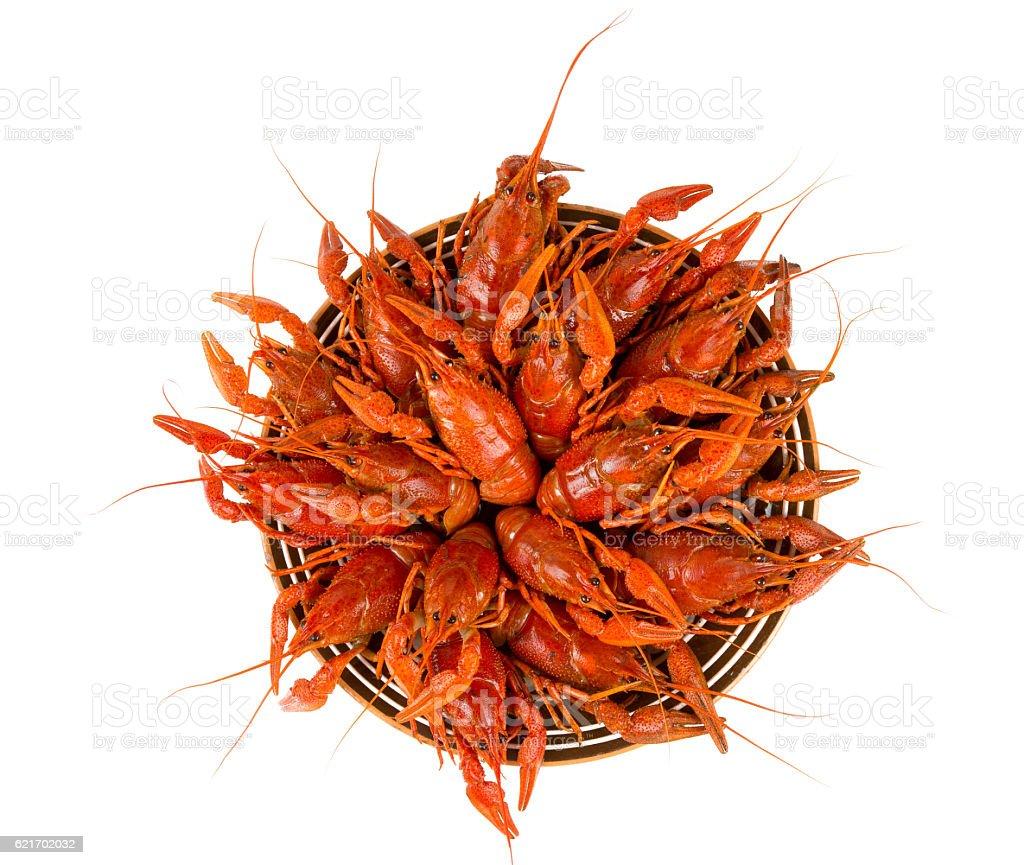 boiled crawfish isolated on white stock photo