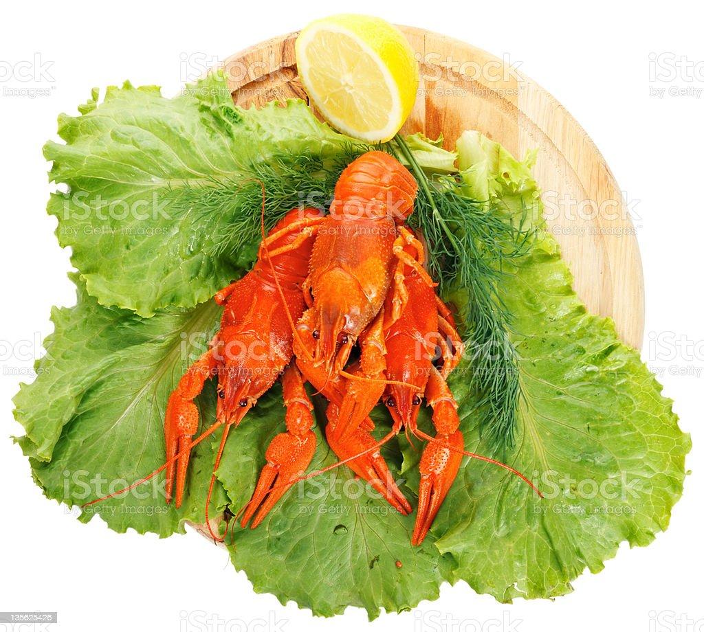Boiled Crayfish on white background royalty-free stock photo