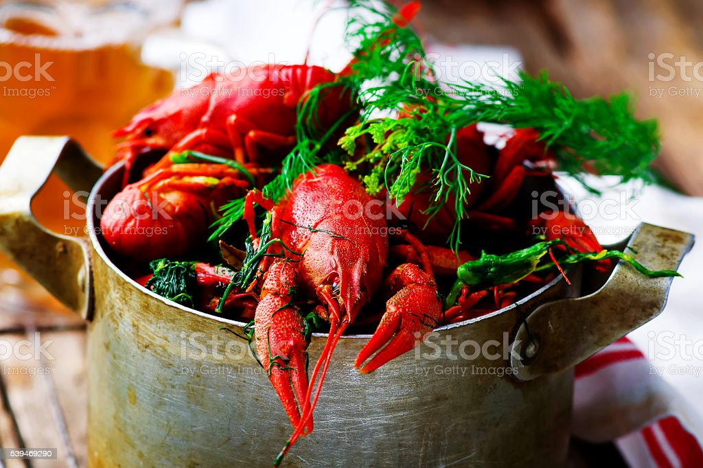boiled crayfish with dill in a vintage metal pan stock photo