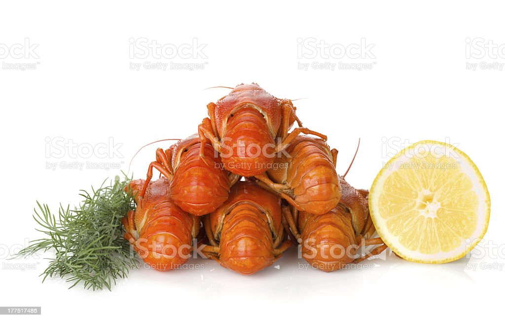 Boiled crayfishes with lemon slice and dill royalty-free stock photo