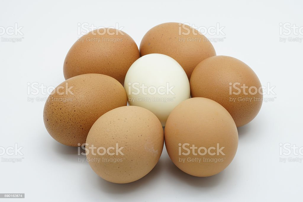 Boiled egg in the middle six chicken eggs royalty-free stock photo