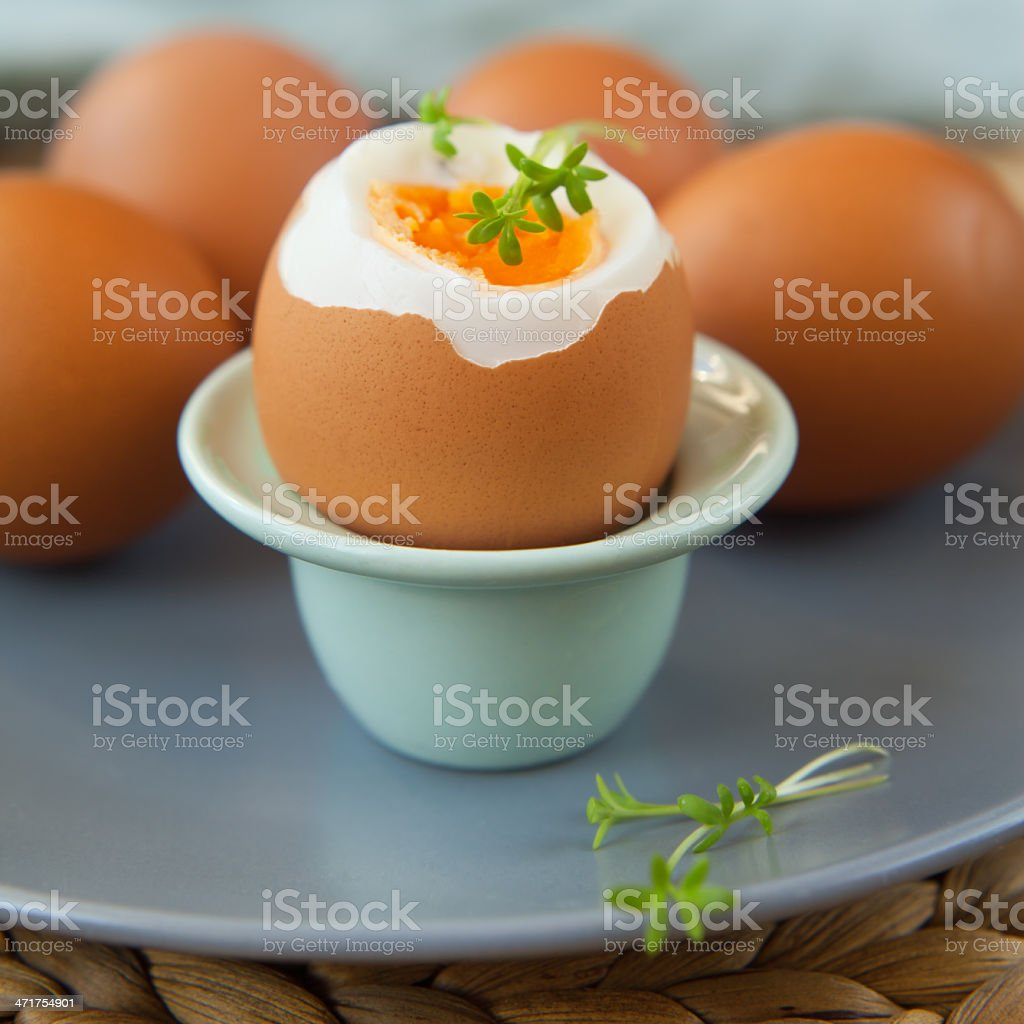 Boiled eggs royalty-free stock photo