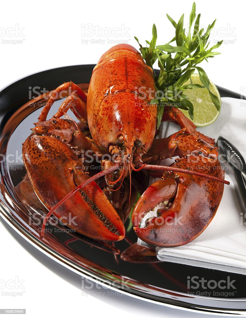 Boiled lobster royalty-free stock photo