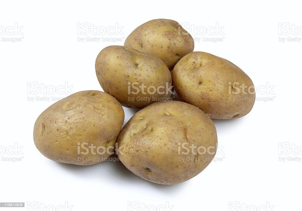 Boiled potatoes stock photo