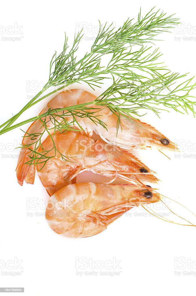 Boiled prawns with dill royalty-free stock photo