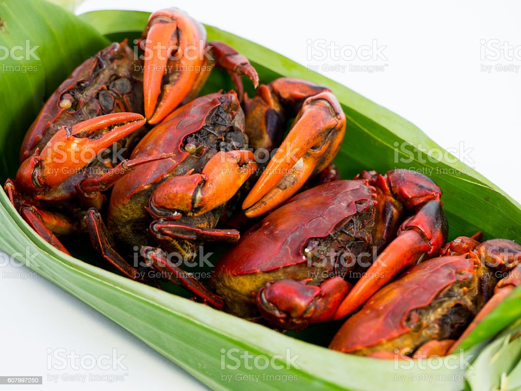 Boiled ricefield crab stock photo