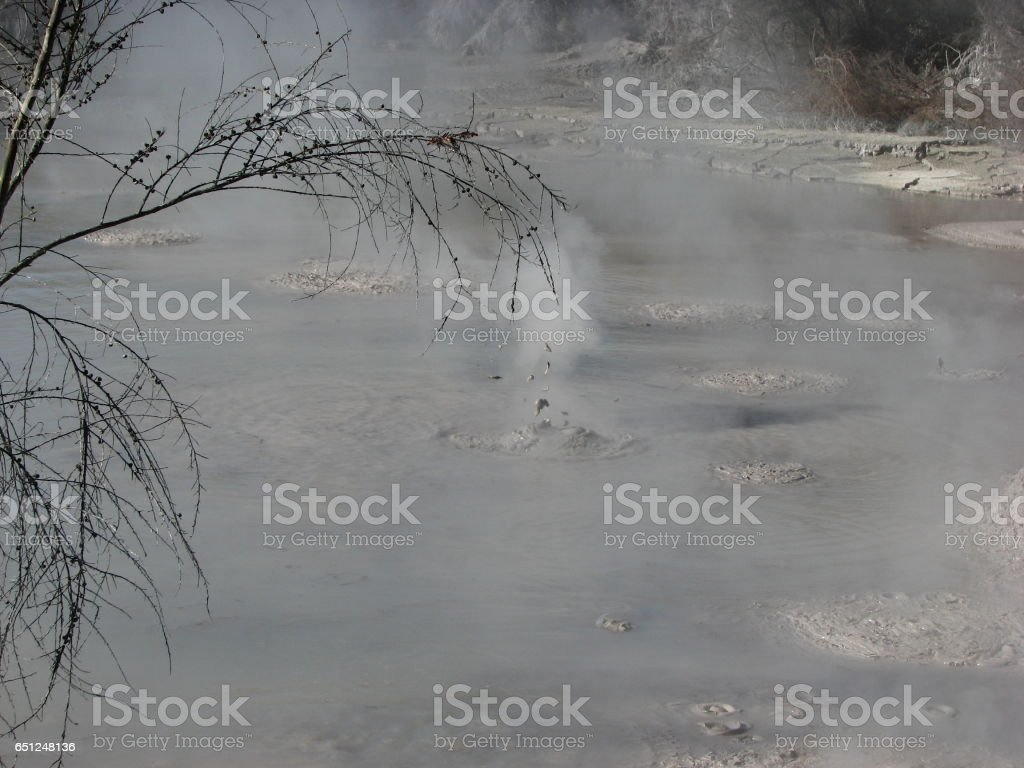 Boiling mud pond in New Zealand. stock photo