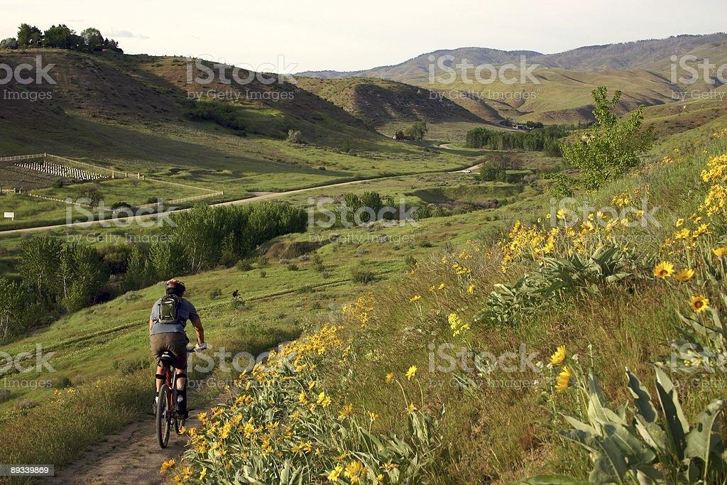 Boise, Idaho Mountain Biker royalty-free stock photo