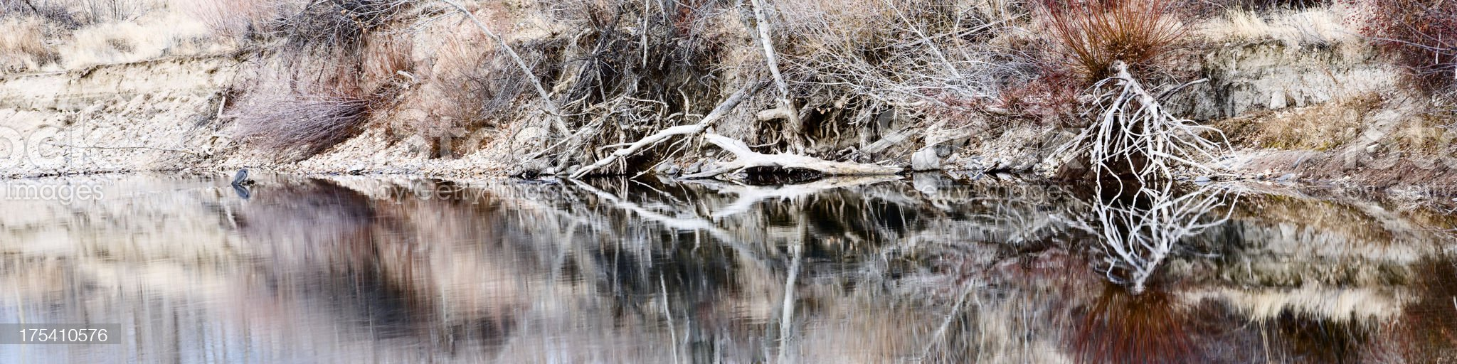 Boise River winter royalty-free stock photo