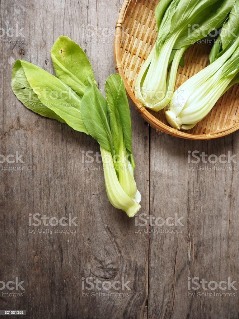 Bok choy chinese cabbage stock photo