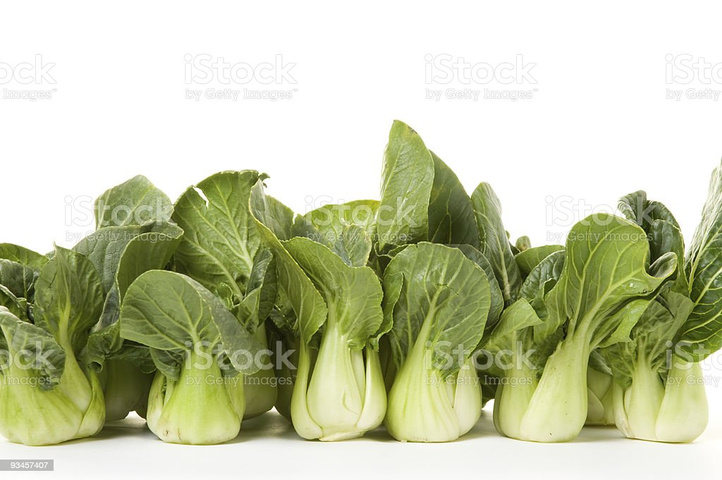 bokchoy line-up royalty-free stock photo