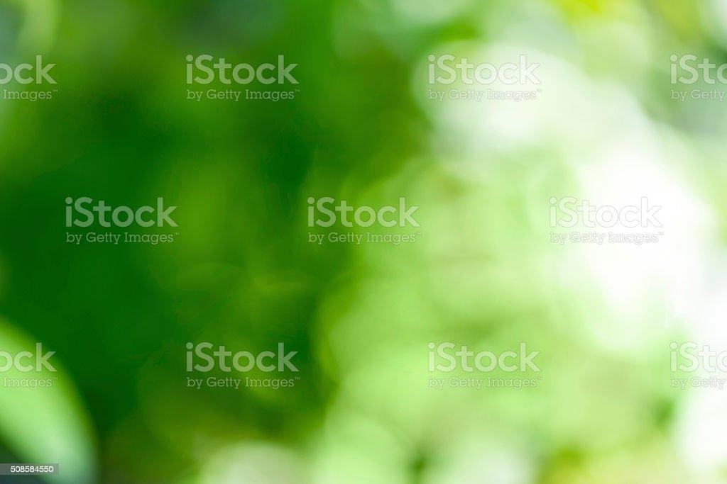 Bokeh abstracto borrosa foto de stock libre de derechos