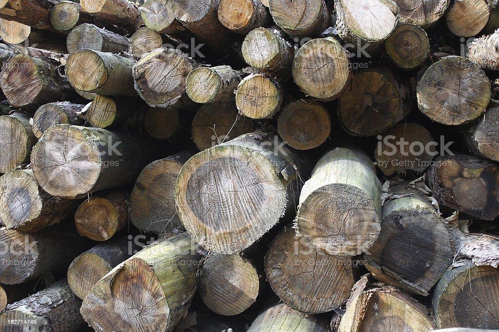 boles stock photo
