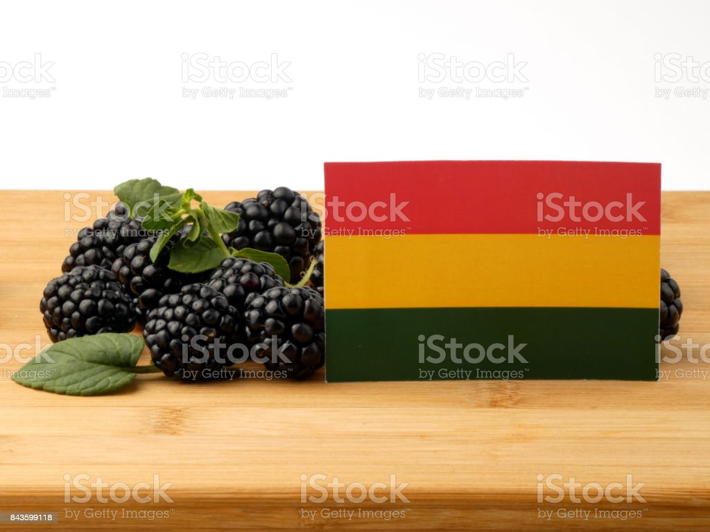 Bolivian flag on a wooden panel with blackberries isolated on a white background stock photo