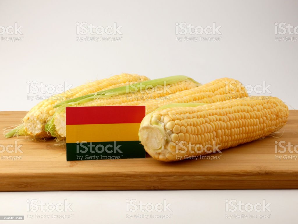 Bolivian flag on a wooden panel with corn isolated on a white background stock photo