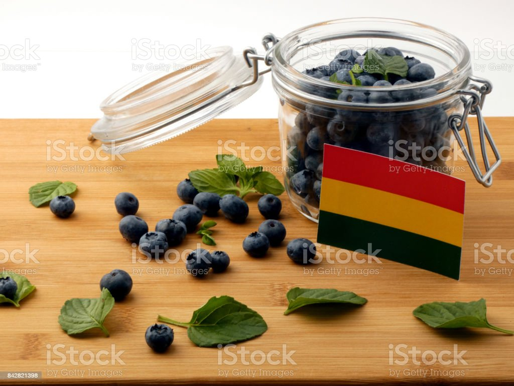 Bolivian flag on a wooden plank with blueberries isolated on white stock photo