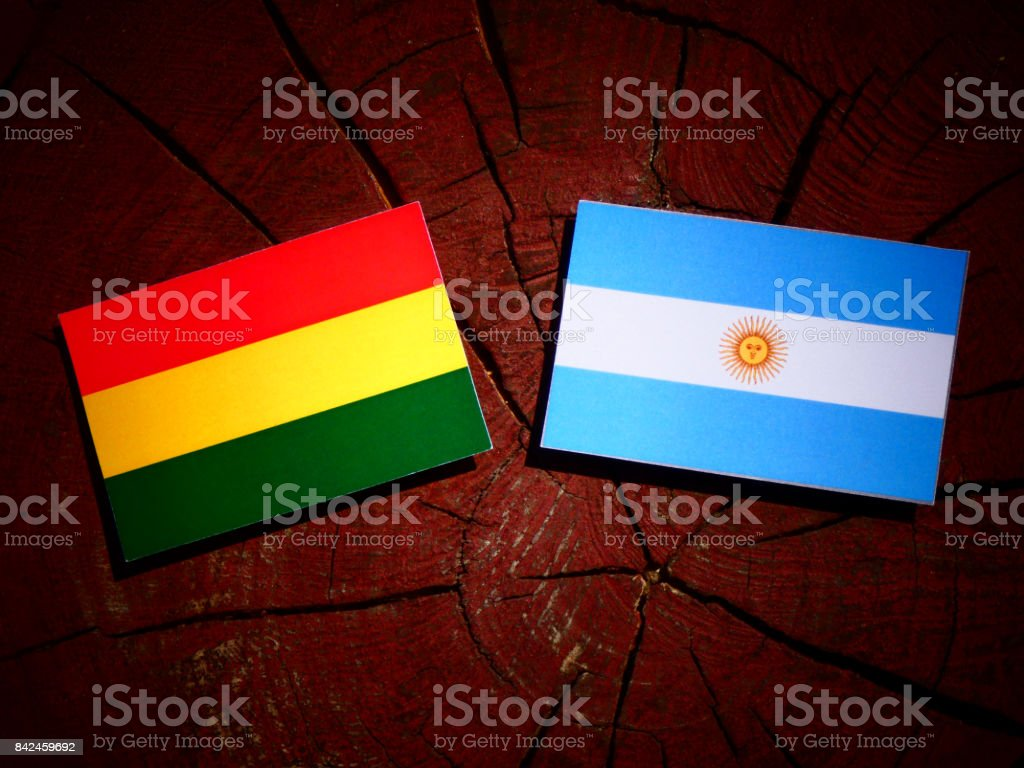 Bolivian flag with Argentinian flag on a tree stump isolated stock photo