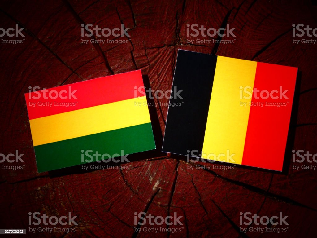 Bolivian flag with Belgian flag on a tree stump isolated stock photo