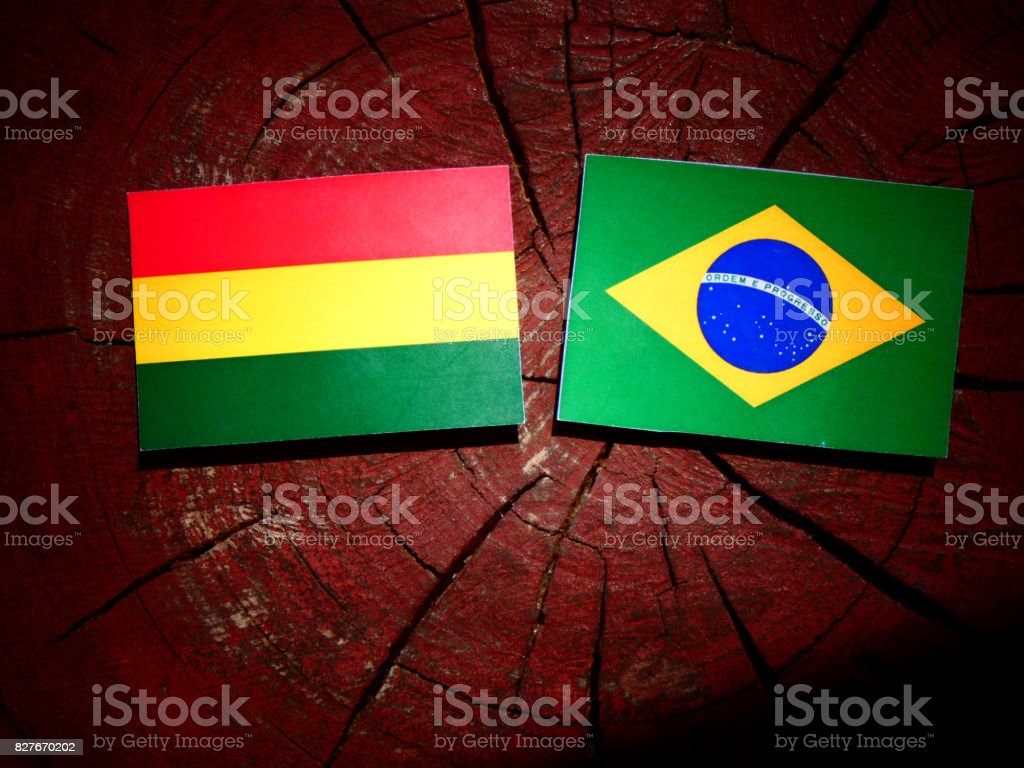 Bolivian flag with Brazilian flag on a tree stump isolated stock photo