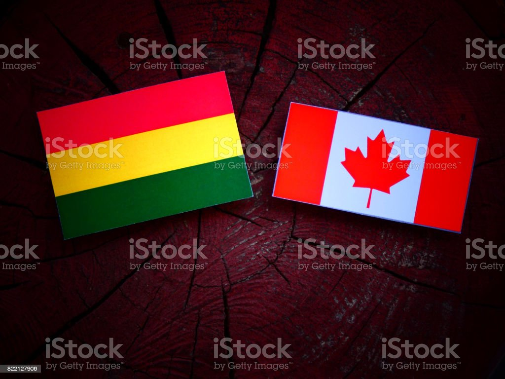 Bolivian flag with Canadian flag on a tree stump isolated stock photo