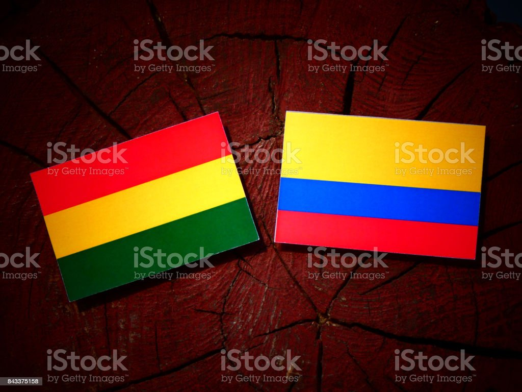 Bolivian flag with Colombian flag on a tree stump isolated stock photo