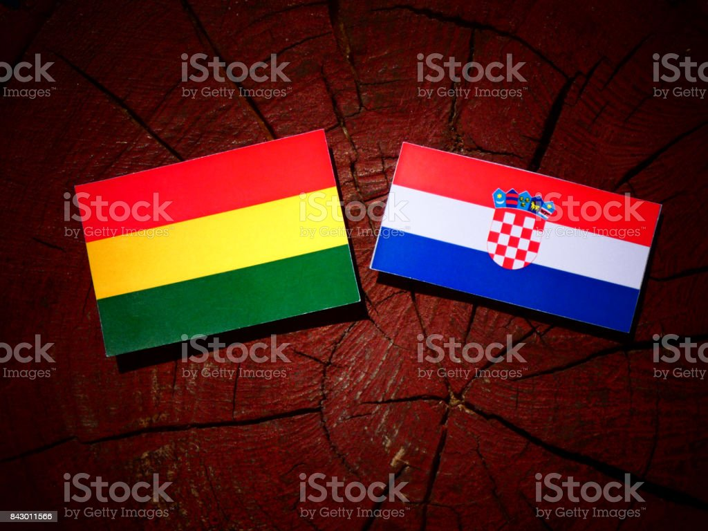Bolivian flag with Croatian flag on a tree stump isolated stock photo