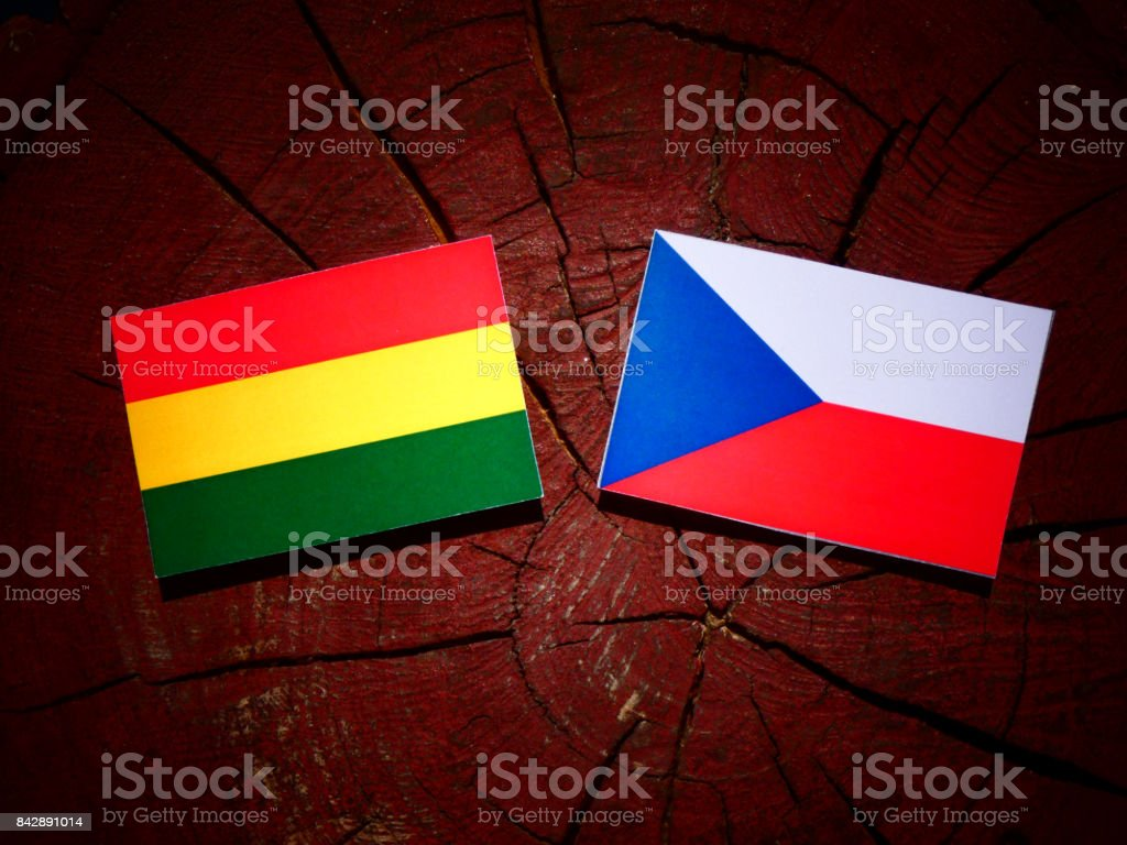 Bolivian flag with Czech flag on a tree stump isolated stock photo