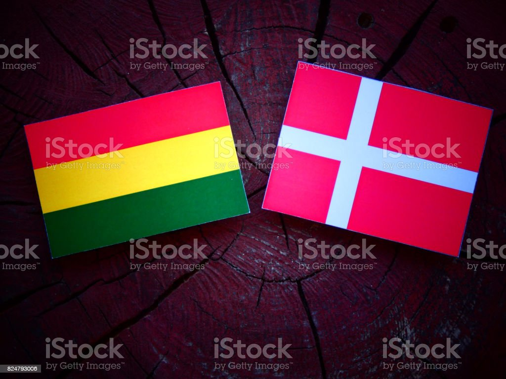Bolivian flag with Danish flag on a tree stump isolated stock photo
