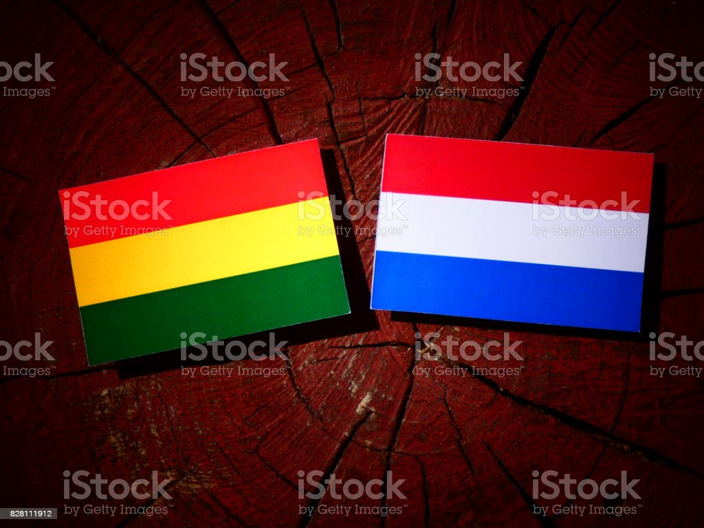 Bolivian flag with Dutch flag on a tree stump isolated stock photo