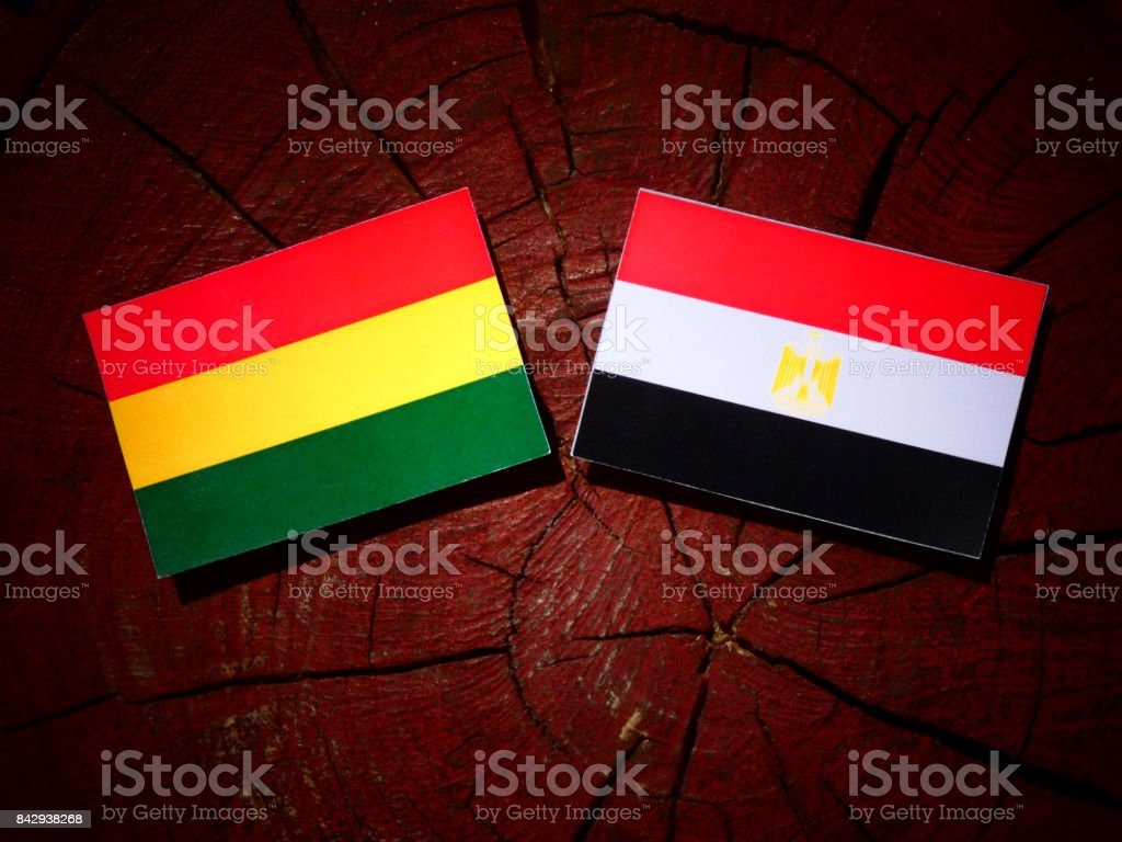 Bolivian flag with Egyptian flag on a tree stump isolated stock photo