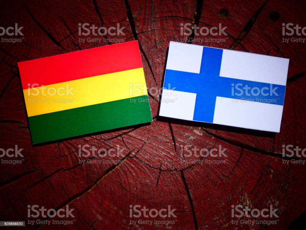 Bolivian flag with Finnish flag on a tree stump isolated stock photo