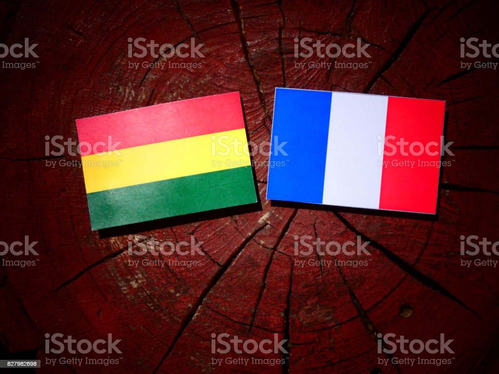 Bolivian flag with French flag on a tree stump isolated stock photo