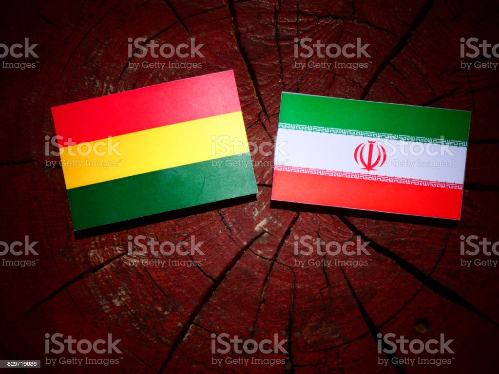 Bolivian flag with Iranian flag on a tree stump isolated stock photo