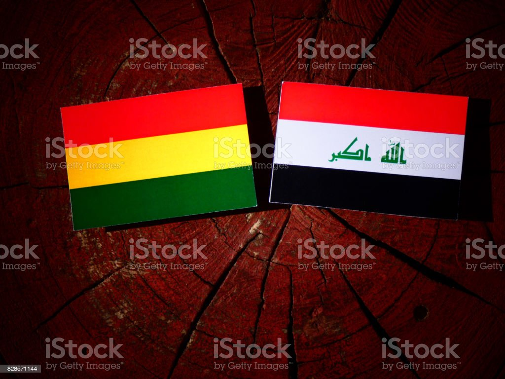 Bolivian flag with Iraqi flag on a tree stump isolated stock photo