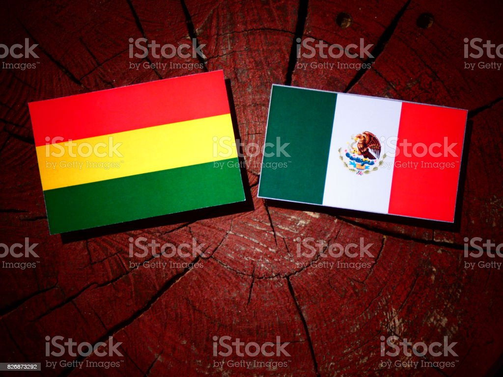 Bolivian flag with Mexican flag on a tree stump isolated stock photo
