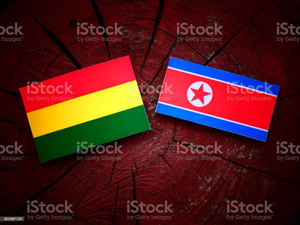 Bolivian flag with North Korean flag on a tree stump isolated stock photo