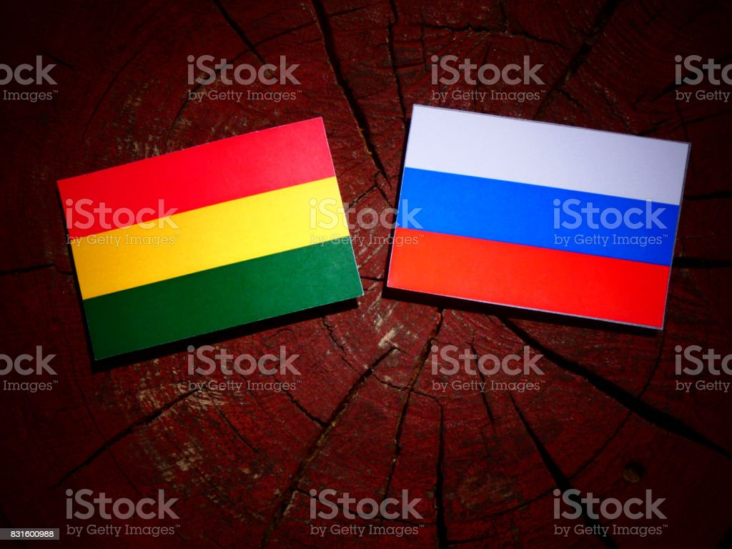 Bolivian flag with Russian flag on a tree stump isolated stock photo