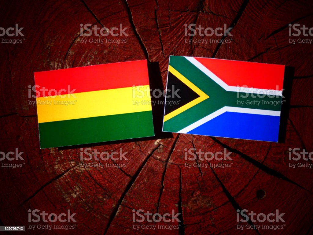 Bolivian flag with South African flag on a tree stump isolated stock photo