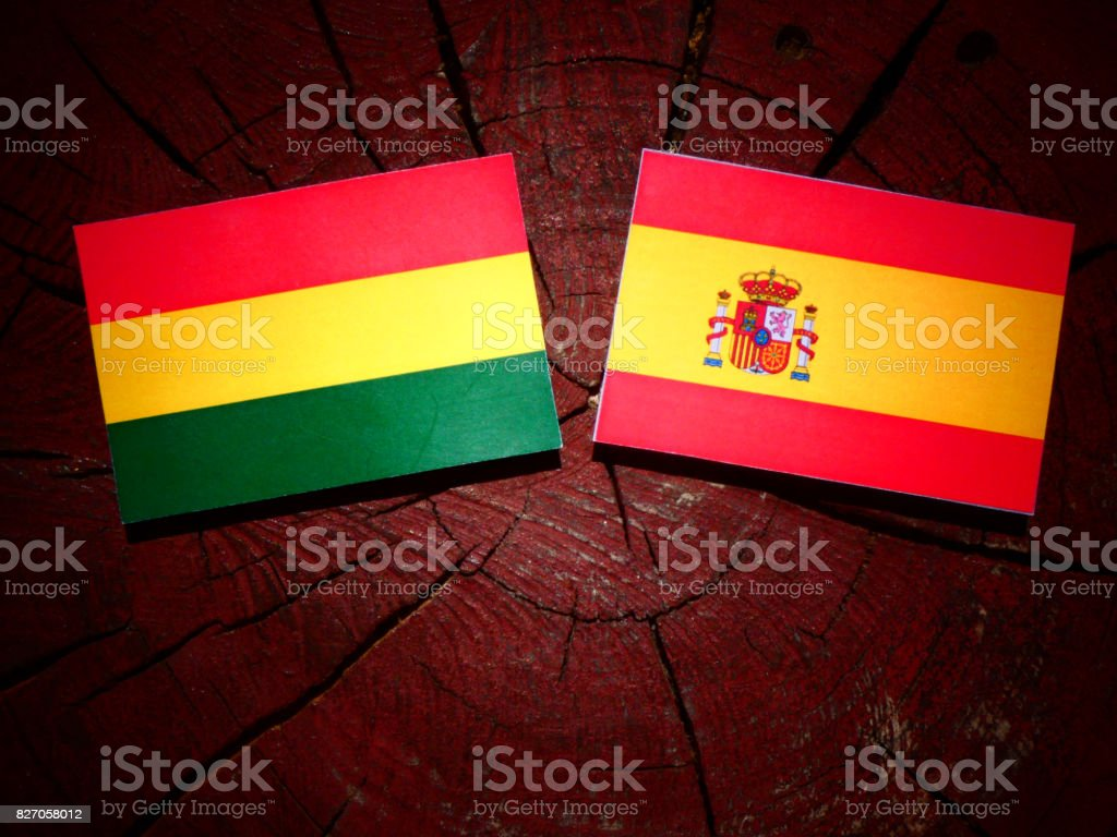 Bolivian flag with Spanish flag on a tree stump isolated stock photo