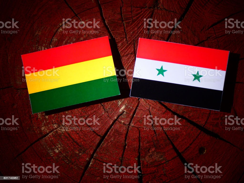 Bolivian flag with Syrian flag on a tree stump isolated stock photo