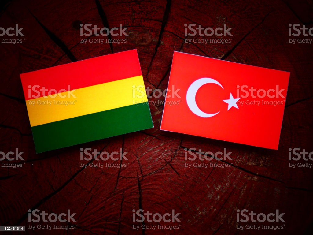 Bolivian flag with Turkish flag on a tree stump isolated stock photo