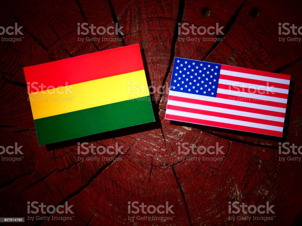 Bolivian flag with USA flag on a tree stump isolated stock photo