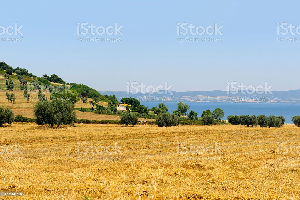 Bolsena lake (Lazio, Italy) stock photo